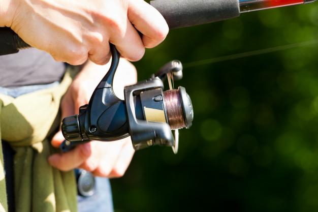 Fiskegrej til din kræsne fisker